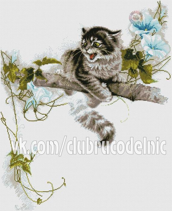5630023_Cat (571x700, 343Kb)