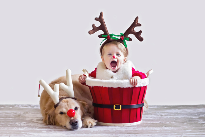 Adorable-Baby-Puppy-Christmas-Picture-Ideas (700x466, 197Kb)