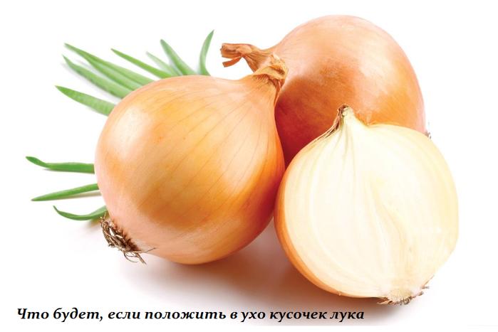 1450859641_CHto_budet_esli_polozhit__v_uho_kusochek_luka (699x467, 272Kb)