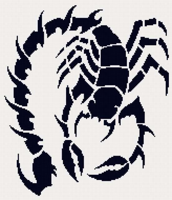тату скорпион 2 2цв (552x640, 246Kb)