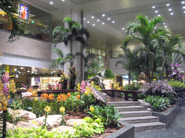 аэропорт чанги сингапур 2 (700x525, 614Kb)