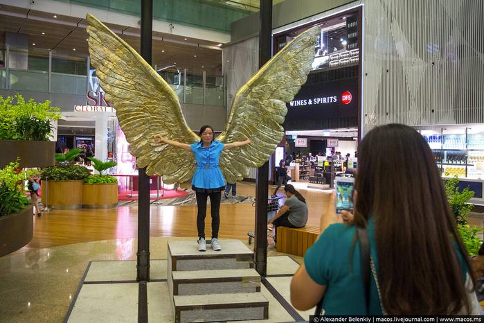 аэропорт чанги сингапур 8 (700x466, 423Kb)