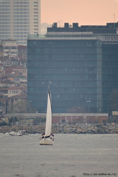 Стамбул (73) (466x700, 212Kb)