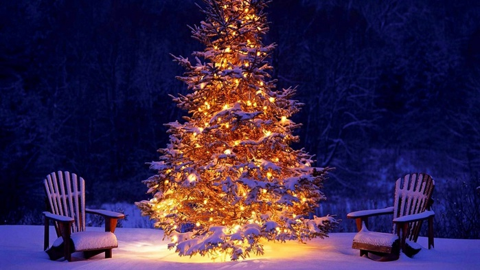 3303834_christmas_tree_9 (700x393, 108Kb)