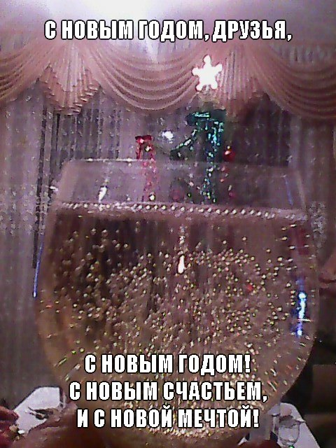 s_novim_godom_druzja_s_novim_godom_s_novim_schastem_i_s_novoj_mechtoj (480x640, 96Kb)