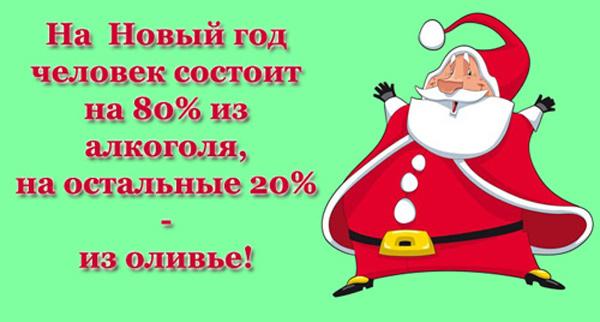 На Новый год человек состоит на 80% из алкоголя и на остальные 20% из салата оливье./3241858_jmor (600x322, 83Kb)