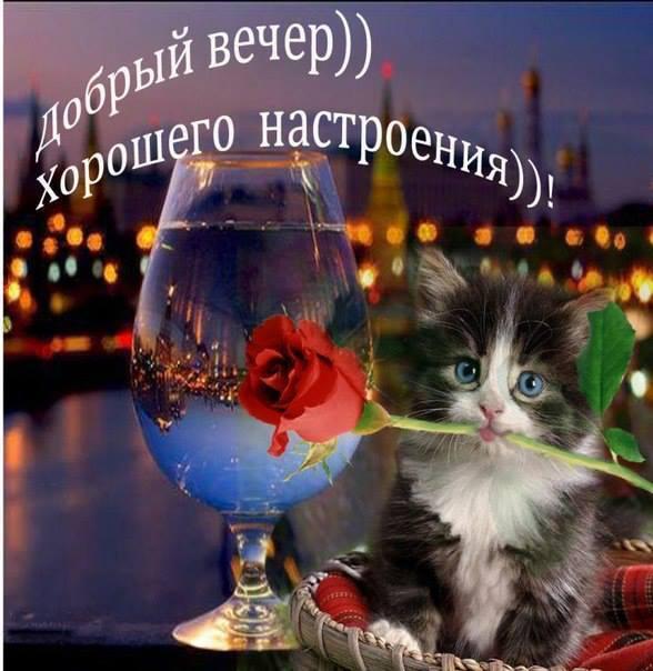 http://img0.liveinternet.ru/images/attach/c/10/127/162/127162786_3470549_.jpg