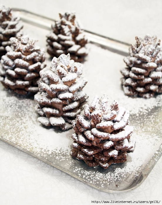 1-chocolate-pinecone-recipe-2 (551x700, 272Kb)
