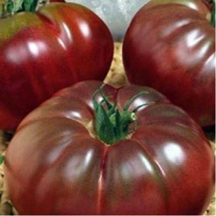 семена/5186405_image095 (426x426, 23Kb)