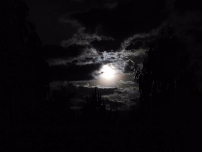 ночное светило (700x525, 81Kb)