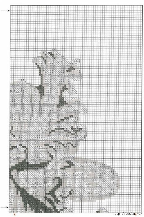 5308269_vyshivkabelayorchidey1 (464x700, 283Kb)