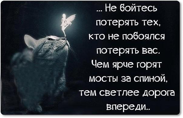 5177462_image (604x391, 53Kb)