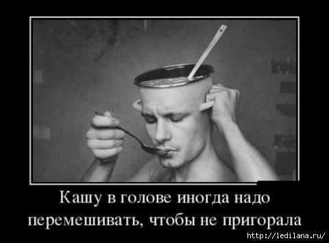 3925311_golova_mozgi (480x355, 51Kb)