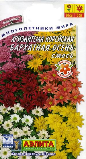 Картинки по запросу корейские хризантемы размножение