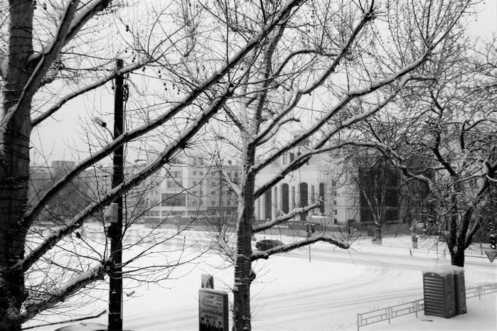 снег7 (700x466, 262Kb)