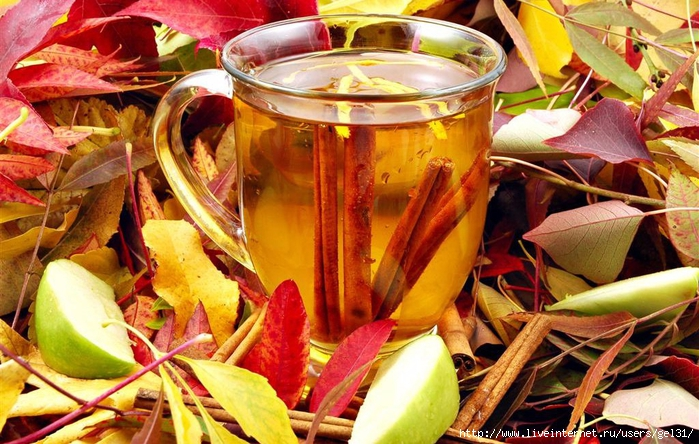 оранжевый чай (700x444, 331Kb)