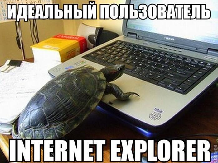 Типичный интернет пользователь. Смешные фото, картинки, демотиваторы, видео
