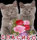 gOBaXL0htTNP (130x143, 46Kb)