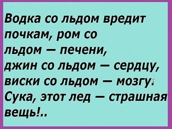 12565595_221696901499071_2144543553693392411_n (548x411, 188Kb)