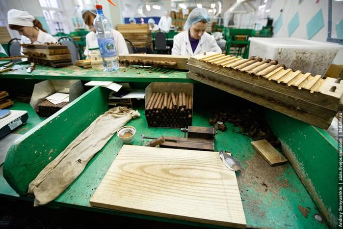 Погарские сигары. Как делают сигары в России