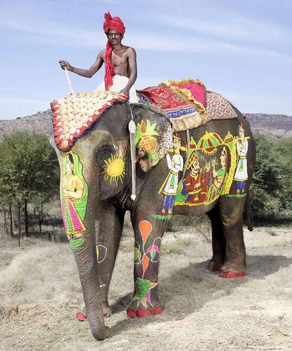 elefant-09 (581x700, 395Kb)