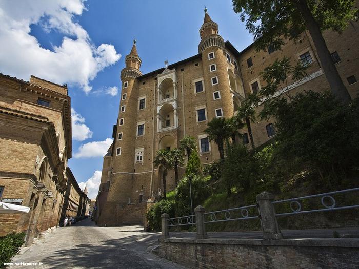 foto_urbino_004_palazzo_ducale (700x525, 404Kb)
