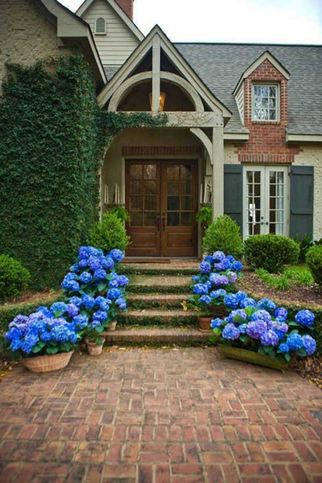 thumbs_front_door_design_ideas (466x700, 397Kb)