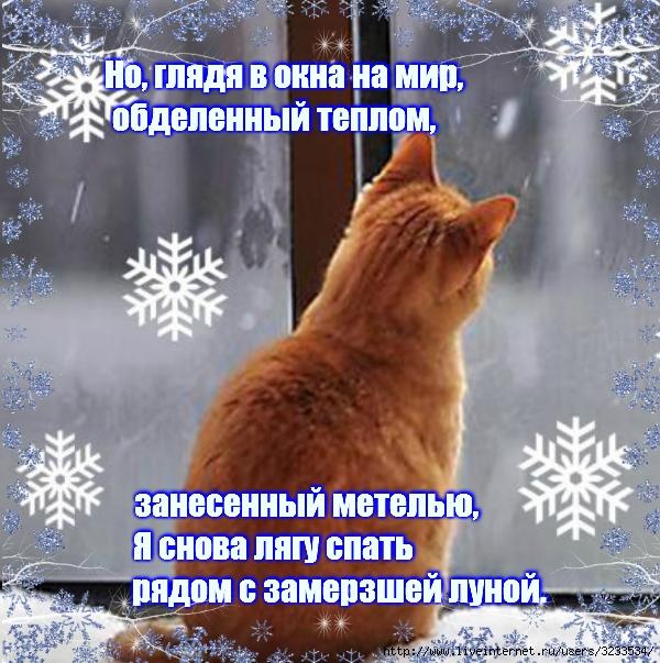 3233534_VipTalisman173 (600x603, 315Kb)
