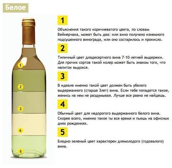 vino (604x587, 180Kb)