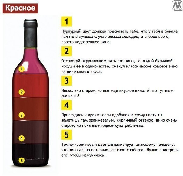 vino2 (604x582, 178Kb)