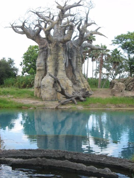 Странно-причудливые деревья 8 (525x700, 354Kb)