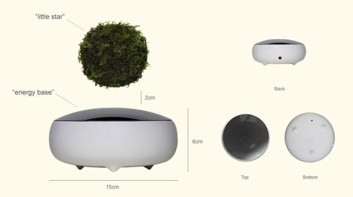 Vozdushnyy-bonsay_2 (700x390, 30Kb)