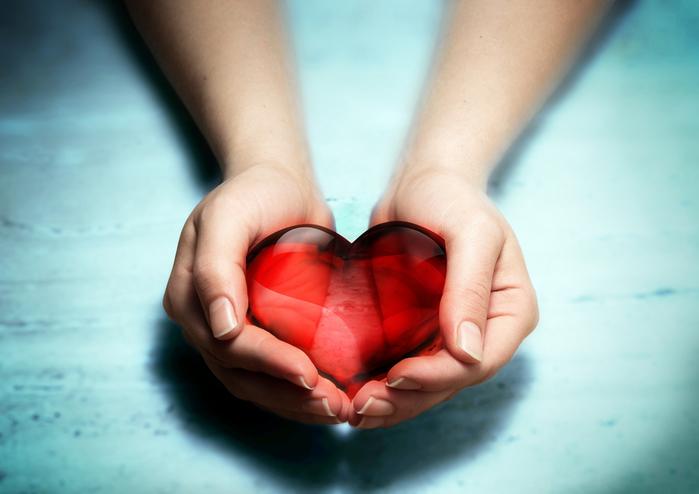 female hands holding red heart_blue bg (700x494, 205Kb)
