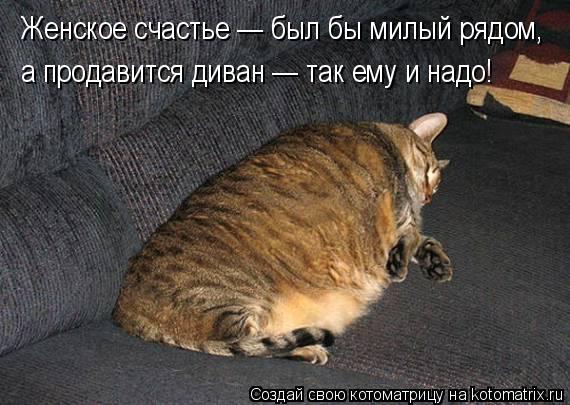 kotomatritsa_Bl (570x405, 185Kb)