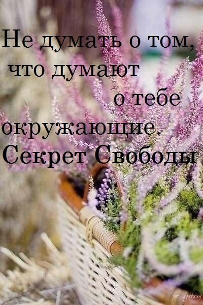 3788799_7_ (400x600, 60Kb)