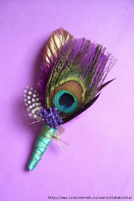 孔雀羽毛的广泛用途 - maomao - 我随心动