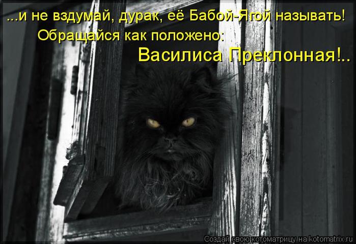 kotomatritsa_bF (700x480, 268Kb)