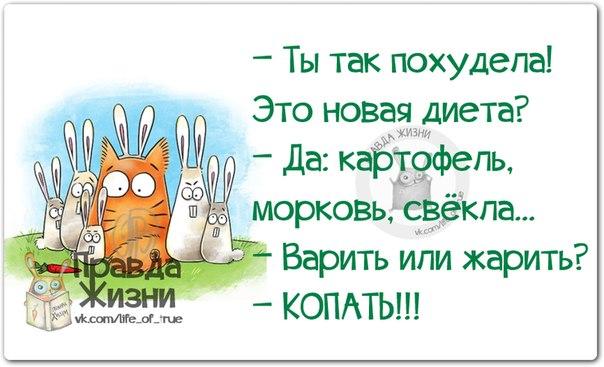 1403637468_frazki-17 (604x367, 183Kb)