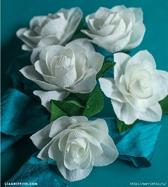 Цветы ГАРДЕНИИ из гофрированной бумаги (2) (557x619, 200Kb)