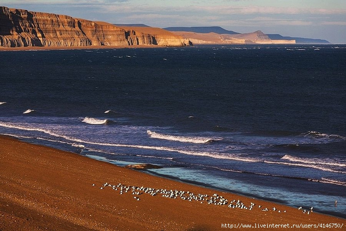Coastlines68 (700x466, 295Kb)
