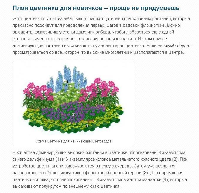 5334332_shema_cvetnika4 (677x657, 94Kb)