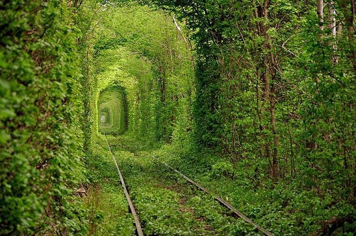 тоннель Клевань (700x465, 372Kb)