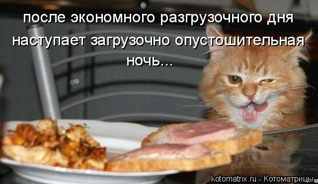 kotomatritsa_g (640x371, 185Kb)