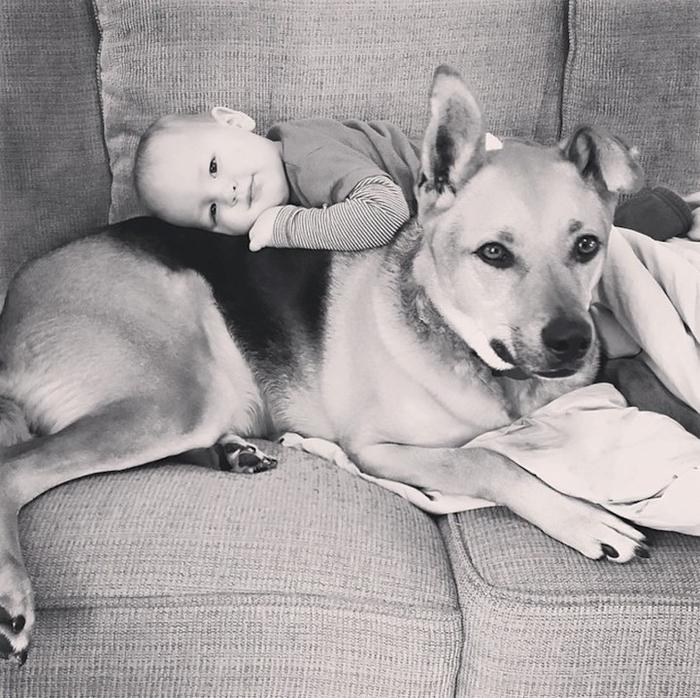 смешные фото детей и собак 1 (700x698, 383Kb)