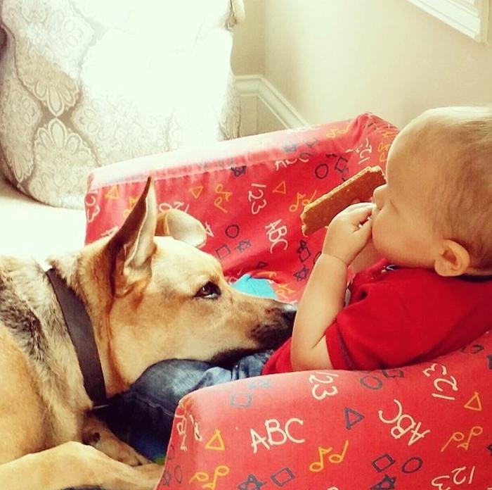 смешные фото детей и собак 5 (700x696, 434Kb)