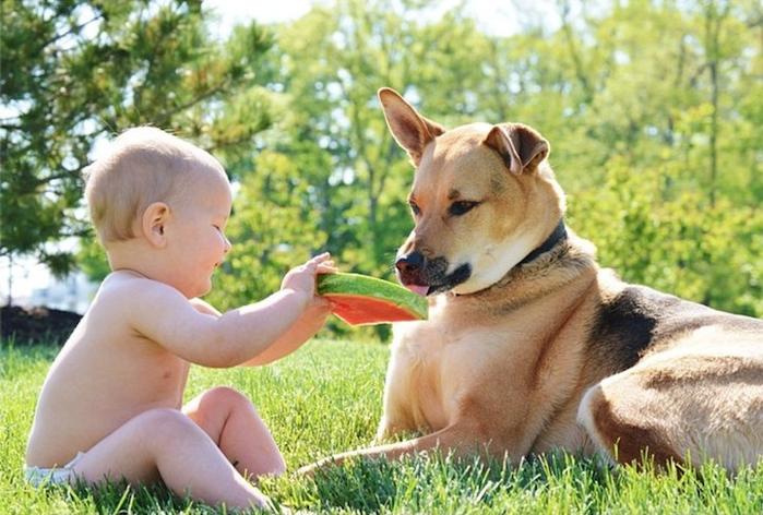 смешные фото детей и собак 10 (700x472, 383Kb)