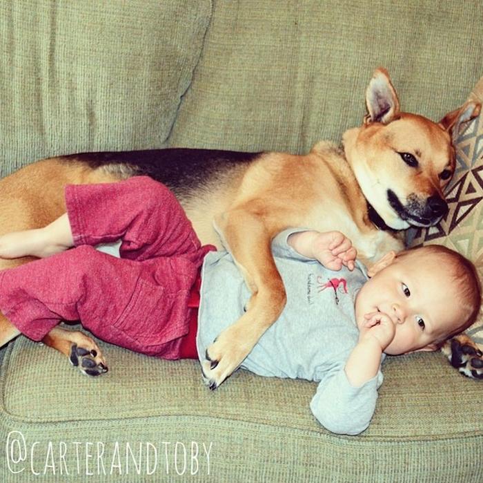 смешные фото детей и собак 12 (700x699, 537Kb)