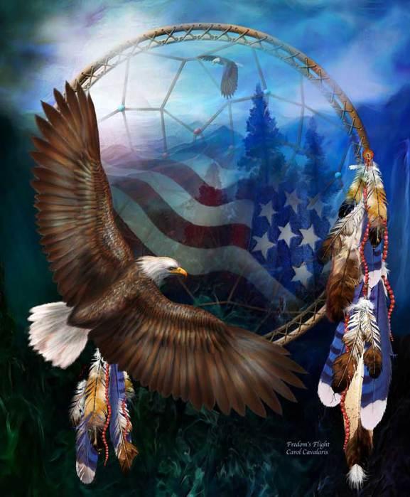 3779070_03_DC_FreedomsFlight_Pic_1_ (577x700, 54Kb)