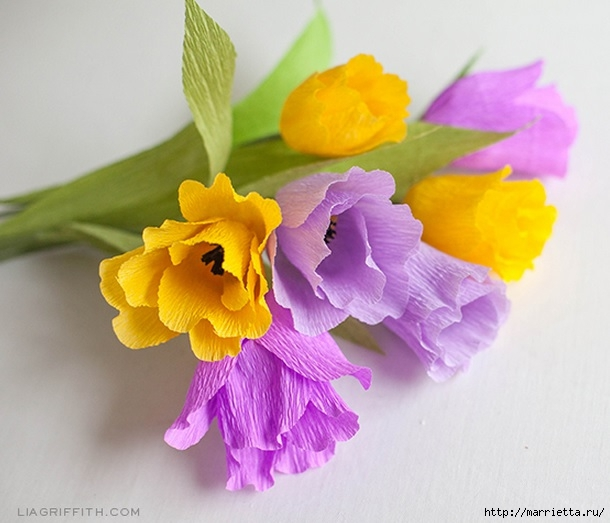 Тюльпаны из гофрированной и офисной бумаги. Мастер-классы (2) (610x523, 154Kb)