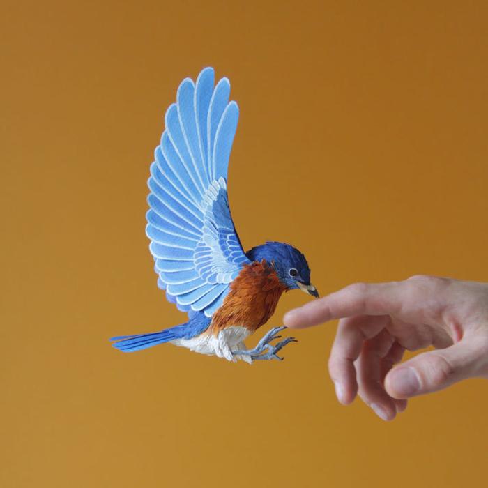 бумажные птицы Диана Белтран Херрера 1 (700x700, 258Kb)